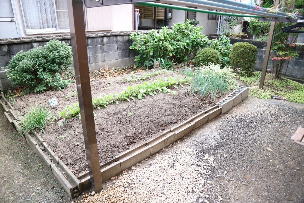 家庭菜園できます!!